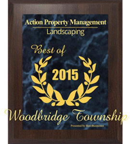 Best Landscaping Company in Woodbridge Township for 2015